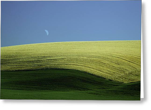 Fields And Quarter Moon Greeting Card by Dale Stillman