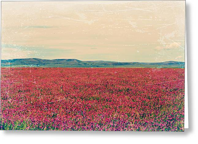 Fields Of Heaven Greeting Card by Leanna Lomanski
