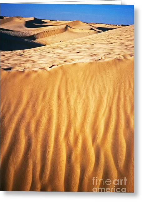 Fiery Desert I Greeting Card