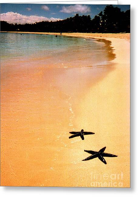 Fiji Beach With Starfish Greeting Card by Jerome Stumphauzer