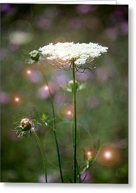 Greeting Card featuring the photograph Fine Lace And Fairies by Penny Hunt