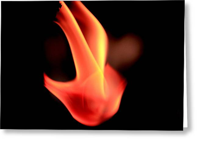 Fingers Of Fire Greeting Card by Arie Arik Chen
