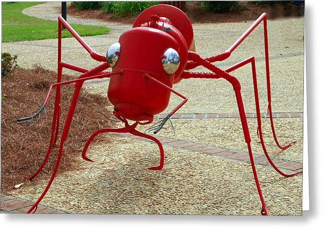 Fire Ant Art Greeting Card by Danny Jones
