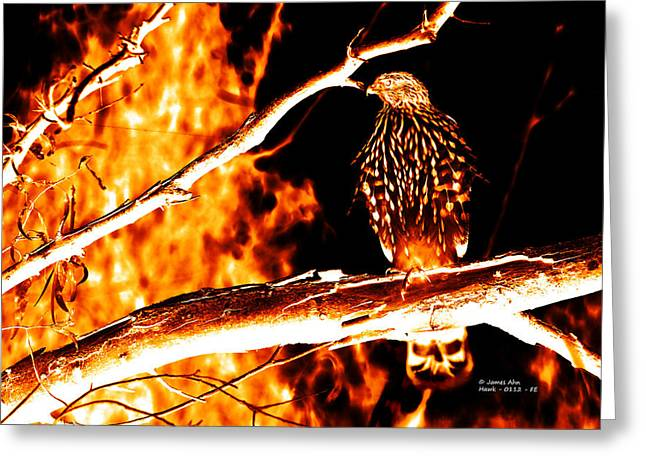 Fire Hawk 0112 Greeting Card