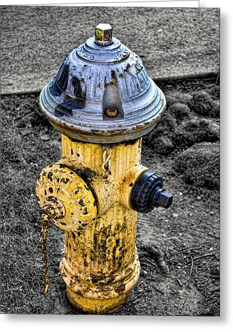 Fire Hydrant Greeting Card by Bennie Reynolds