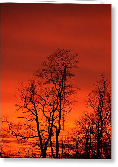 Fire Sky Greeting Card