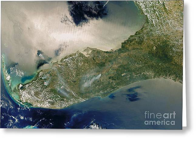 Fires In Florida Greeting Card by Nasa
