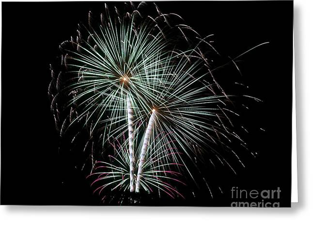 Greeting Card featuring the photograph Fireworks 8 by Mark Dodd