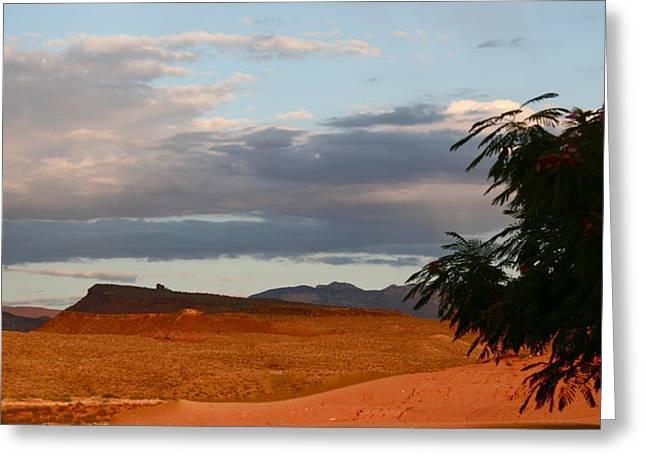 First Desert Light Greeting Card