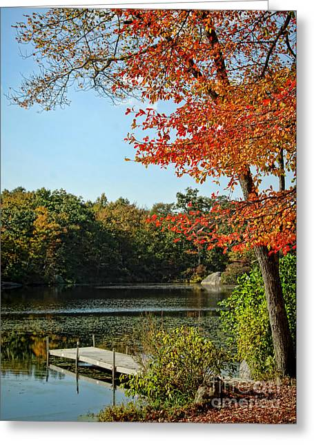 First Glimpse Of Fall Greeting Card