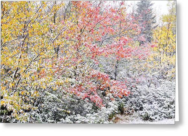 First Snow Highland Scenic Highway Greeting Card