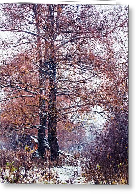 First Snow. Winter Coming Greeting Card