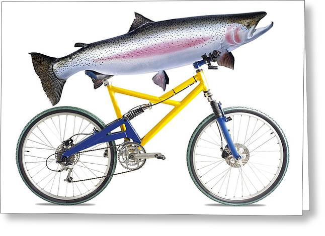 Fish On A Bicycle Greeting Card by Tony Mcconnell