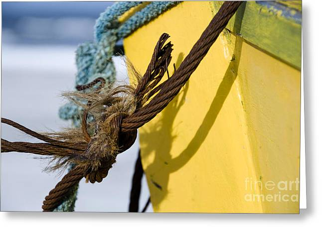 Greeting Card featuring the photograph Fishermens' Knot by Agnieszka Kubica