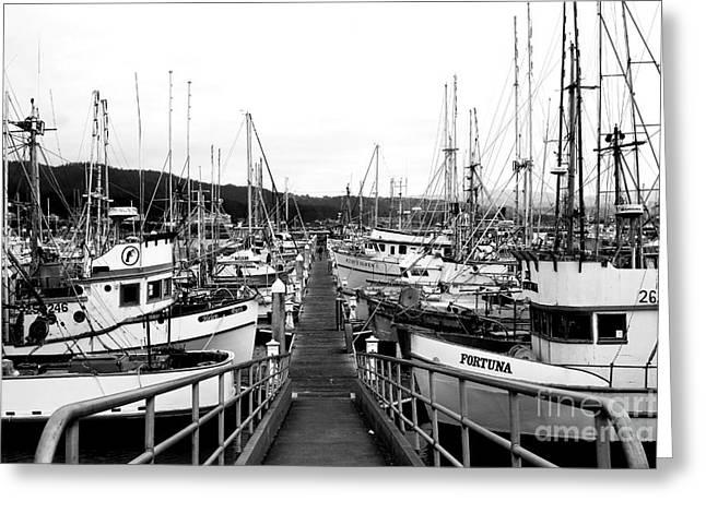 Fishing Boats . 7d8202 Greeting Card