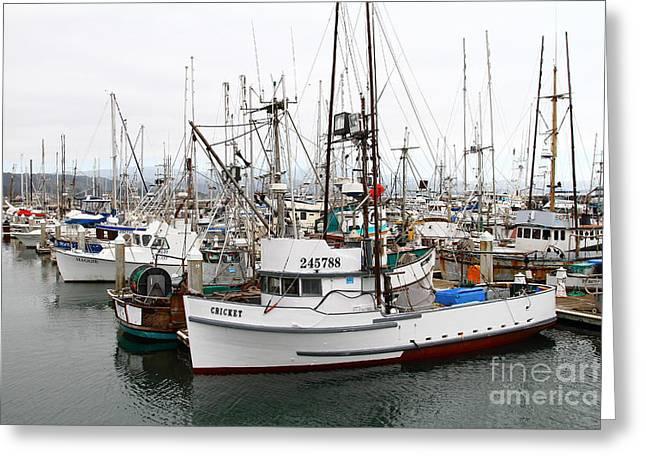 Fishing Boats In Pillar Point Harbor At Half Moon Bay California . 7d8199 Greeting Card