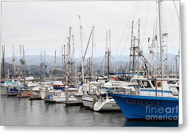 Fishing Boats In Pillar Point Harbor At Half Moon Bay California . 7d8208 Greeting Card by Wingsdomain Art and Photography
