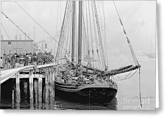 Fishing Schooner At T Wharf In Boston 1905 Greeting Card