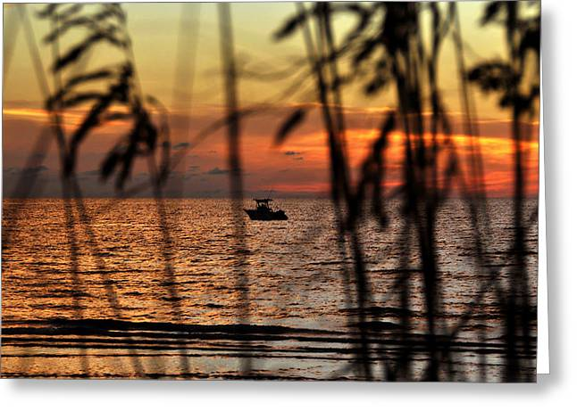 Fishing The Coast Greeting Card by David Lee Thompson