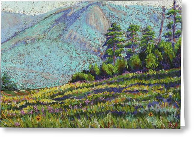 Flagstaff Meadow Greeting Card by Drusilla Montemayor