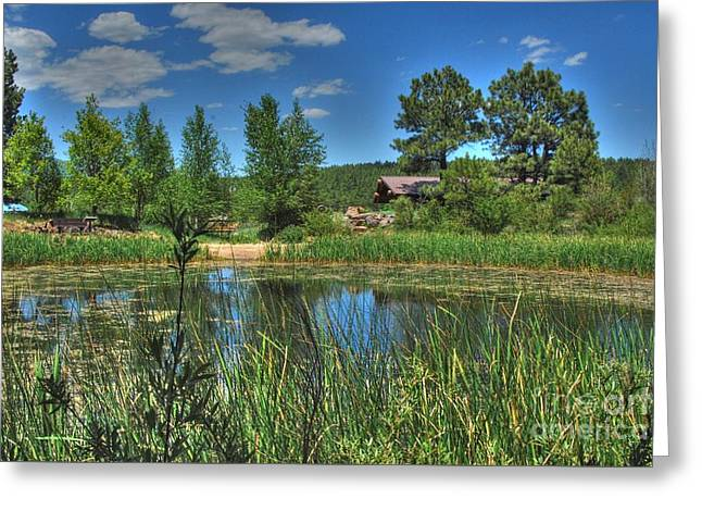 Greeting Card featuring the photograph Flagstaff by Tam Ryan