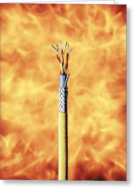 Flame-resistant Cable Greeting Card by Richard Kail