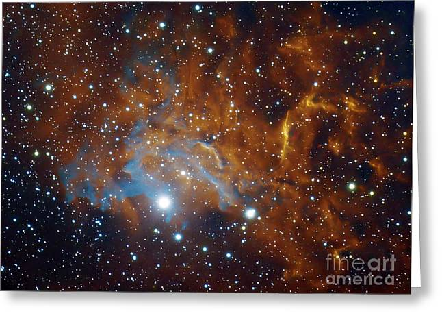 Flaming Star Nebula In Auriga Greeting Card by Filipe Alves