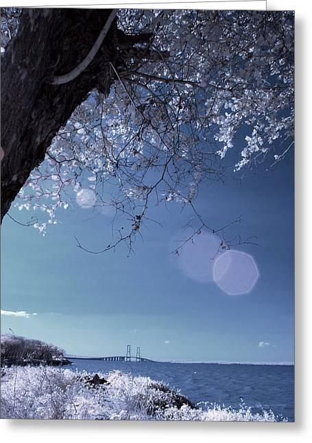Flaring Sun Greeting Card by Rovi Tavare
