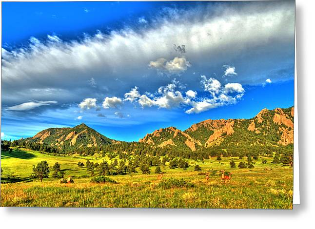 Flatirons Wildlife Wonder Greeting Card by Scott Mahon