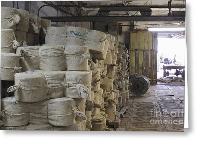 Flax Stored In Bags Greeting Card by Magomed Magomedagaev