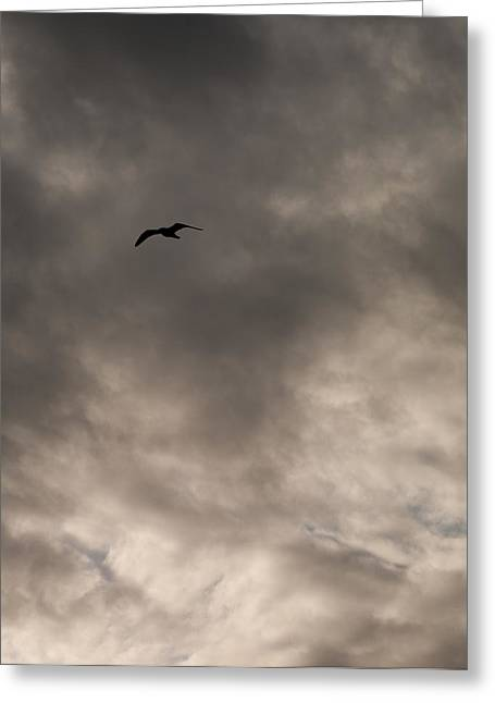 Flight Into Darkness Greeting Card