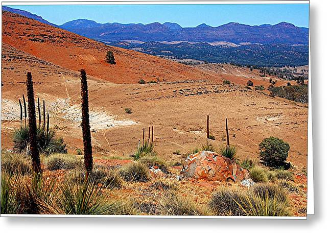 Flinders Ranges Hucks Lookout Greeting Card by Patricia Tapping