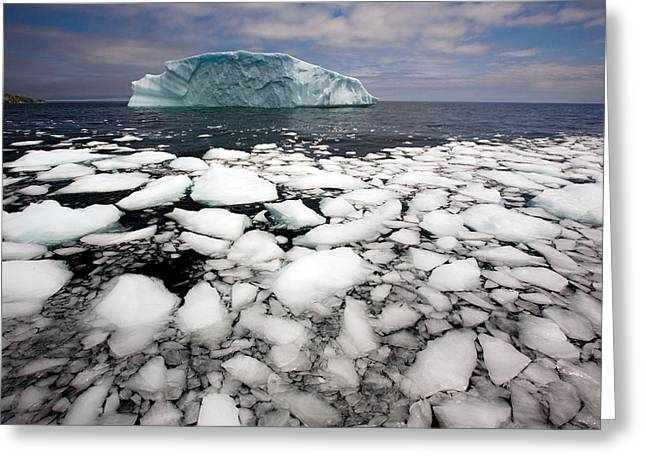 Floating Ice Shattered From Iceberg Greeting Card by John Sylvester