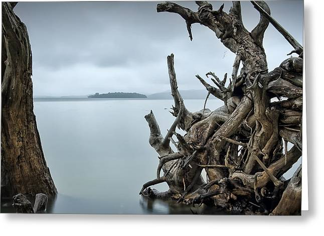 Floating Island Greeting Card by Michael Howard