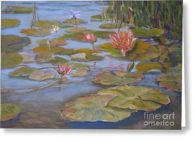 Floating Lillies Greeting Card by Mohamed Hirji