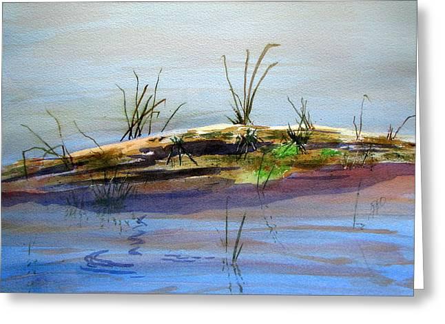 Floating Log Greeting Card by Ramona Kraemer-Dobson