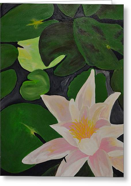 Floating Lotus 2 Greeting Card by Holly Donohoe