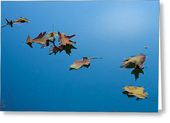 Floating On The Sky Greeting Card by Michael Flood