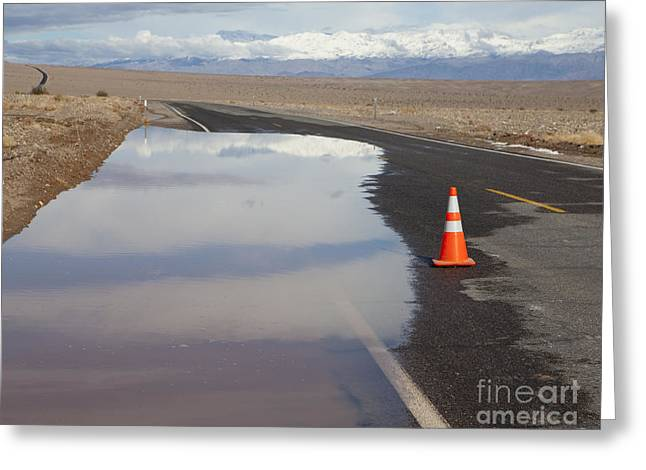 Flooded Road In The Desert Greeting Card by Paul Edmondson