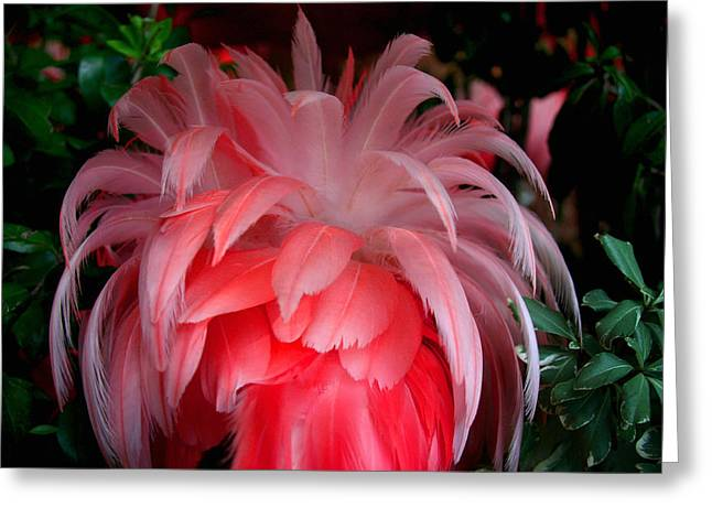 Greeting Card featuring the photograph Flora And Fauna Number Two by Lon Casler Bixby