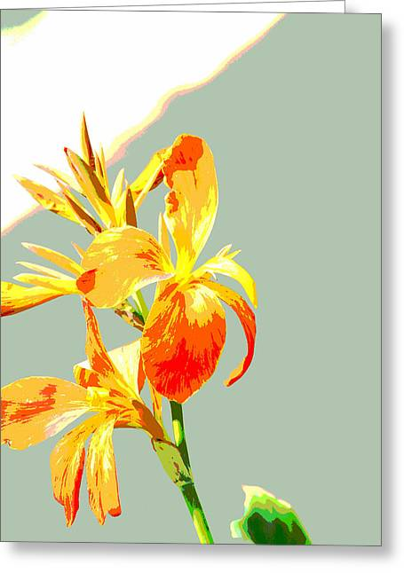 Floral Abstract Greeting Card by Lauren MacIntosh