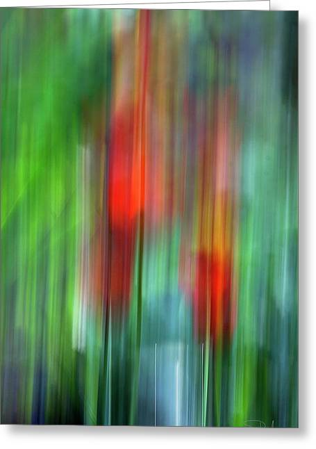 Greeting Card featuring the photograph Floral Abstract by Raffaella Lunelli