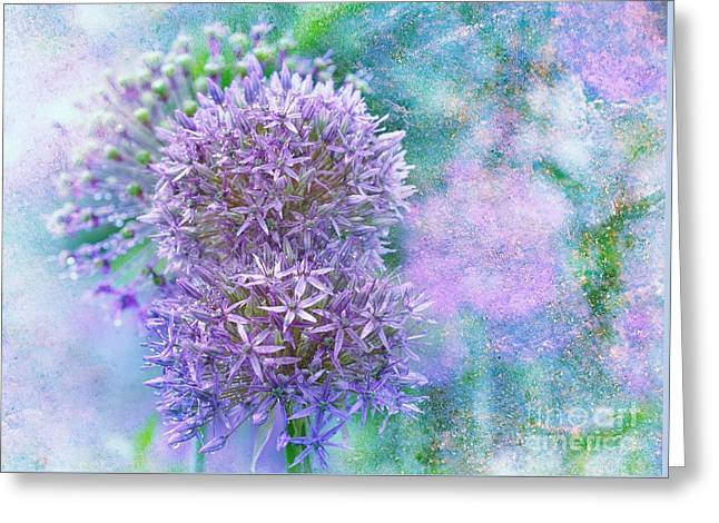 Floral Burst Greeting Card by Elaine Manley