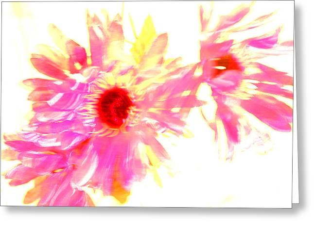 Floral Burst Greeting Card by Mickey Hatt