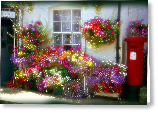 Greeting Card featuring the photograph Floral by Rod Jones