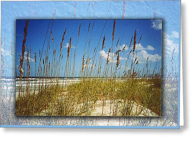 Perfect Day At A Florida Beach Greeting Card by Barbara Middleton