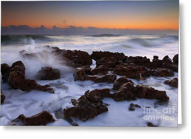 Florida Sea Explosion Greeting Card by Mike  Dawson