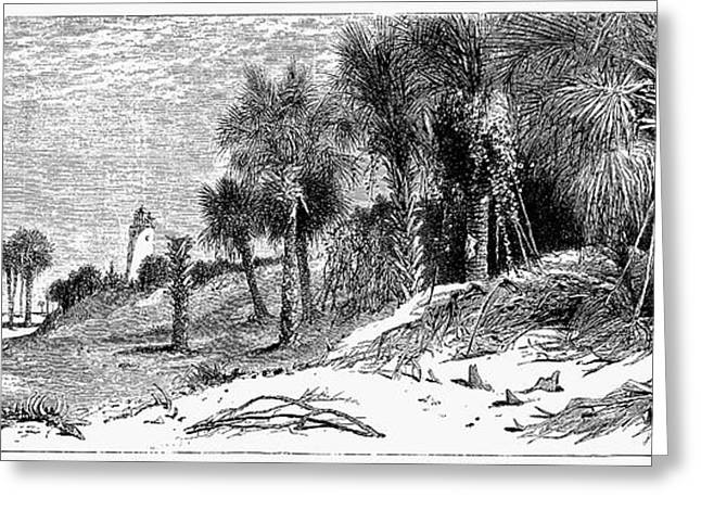 Florida: St. Johns River Greeting Card by Granger
