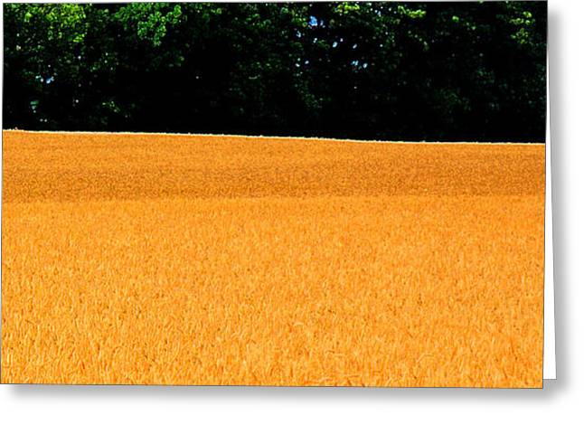 Flow Of The Field 3 Ae  Greeting Card by Lyle Crump