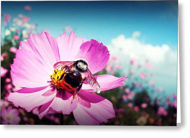 Flower And Company Greeting Card
